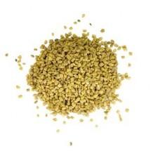 Fenugrec en grains
